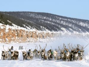 Доставка грузов в Якутию, модальные и негабаритные грузоперевозки
